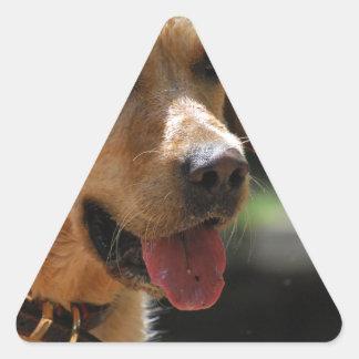 Golden lab triangle sticker