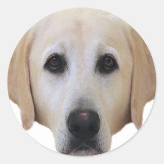 Golden Labrador Classic Round Sticker