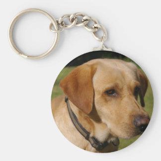 Golden Labrador Key Ring