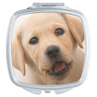 Golden Labrador Puppy (8 Months Old) Mirror For Makeup