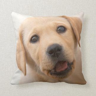 Golden Labrador Puppy Cushion