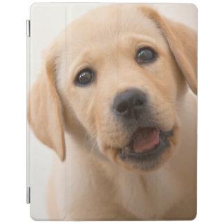 Golden Labrador Puppy iPad Cover