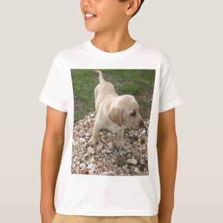 Golden Labrador Puppy T-Shirt