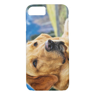 Golden Labrador Retriever iPhone 7 Case