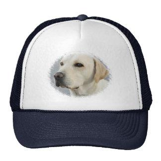 Golden Labrador Retriever Photograph Mesh Hat