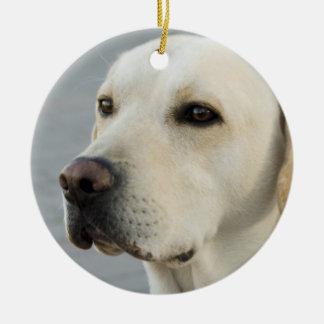 Golden Labrador Retriever Photograph Round Ceramic Decoration