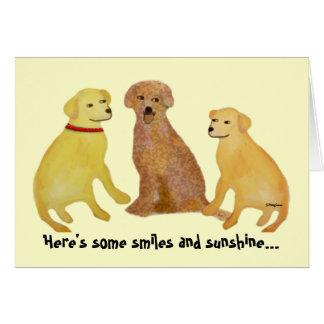 Golden Labrador Retrievers Get Well Card