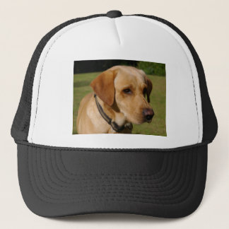 Golden Labrador Trucker Hat