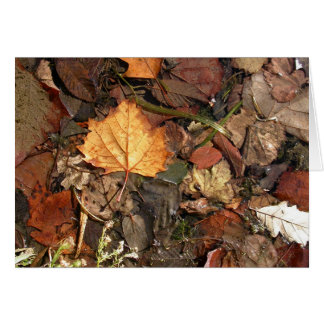 Golden Leaf Greeting Card