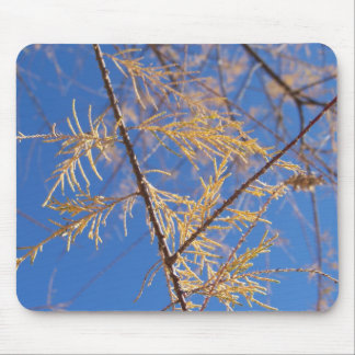 Golden leaves... mouse pad