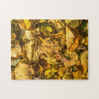 Golden leaves photo puzzle