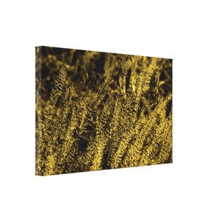 Golden Light Grass Canvas Print