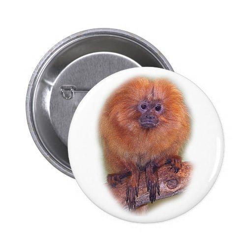 Golden Lion Tamarin, Golden Marmoset Monkey Brazil 6 Cm Round Badge