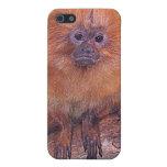 Golden Lion Tamarin, Golden Marmoset Monkey Brazil Cases For iPhone 5