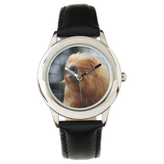 Golden Lion Tamarin Monkey Watch