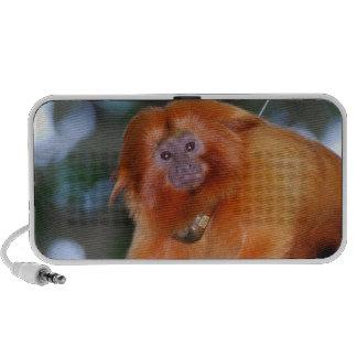 Golden Lion Tamarin Portable Speakers