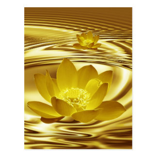Golden lotus flower postcard