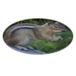Golden Mantled Ground Squirrel Cutting Board