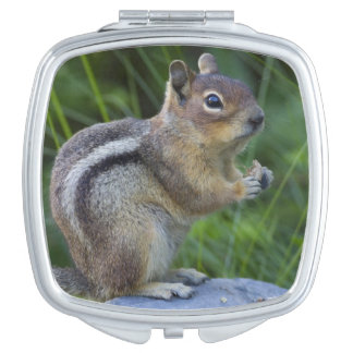 Golden Mantled Ground Squirrel Makeup Mirror