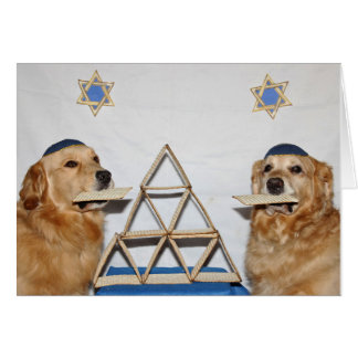 Golden Matzo Fun Passover Greeting Card