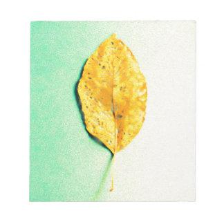 Golden Mint by JP Choate Notepad
