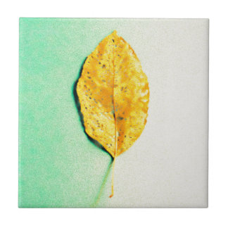 Golden Mint by JP Choate Tile