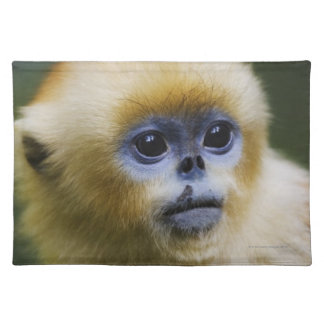 Golden monkey placemat