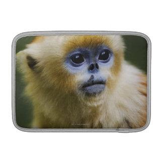 Golden monkey sleeve for MacBook air