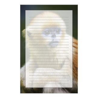 Golden monkey stationery