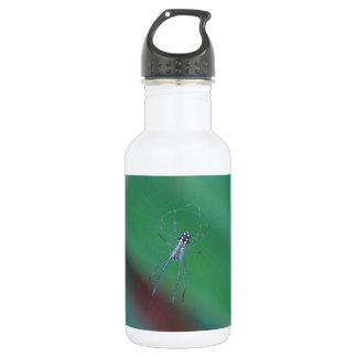 Golden Orb Spider 532 Ml Water Bottle
