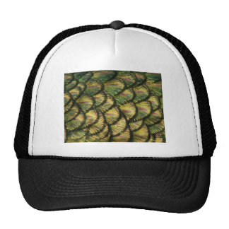 Golden Peacock Feathers Mesh Hats