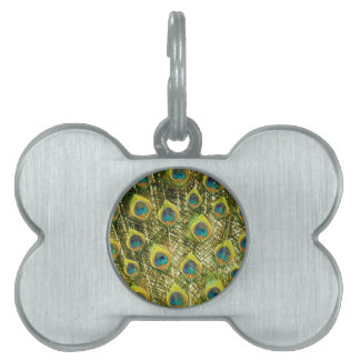 Golden Peacock Pet Name Tag