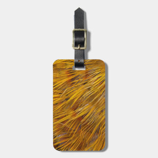 Golden Pheasant Feathers Close Up Luggage Tag