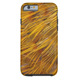Golden Pheasant Feathers Close Up Tough iPhone 6 Case