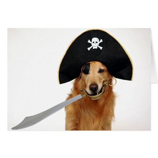Golden Pirate Greeting Card