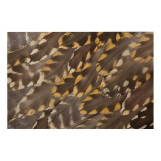 Golden Plover Feathers Wood Print