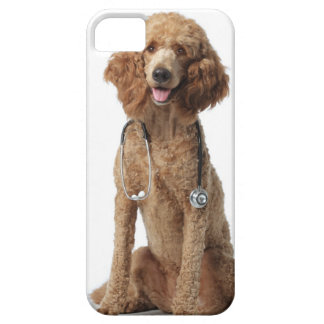 Golden Poodle Dog wearing a stethoscope Case For The iPhone 5
