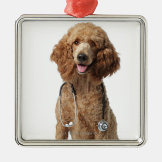 Golden Poodle Dog wearing a stethoscope Christmas Ornament