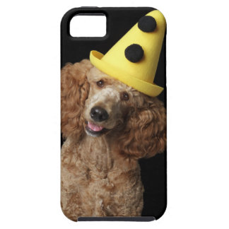 Golden Poodle Dog wearing a yellow clown hat iPhone 5 Case