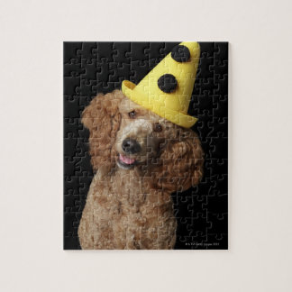 Golden Poodle Dog wearing a yellow clown hat Puzzles