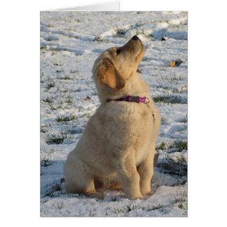 Golden Pup Snow Card