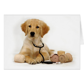 Golden Puppy Doctor Card