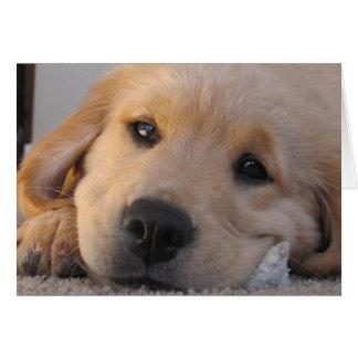 Golden Puppy Miss You Card
