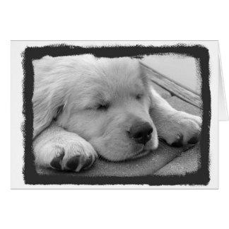 Golden Puppy Sleeping Card