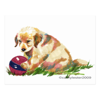 Golden Puppy with Ball Postcard