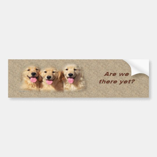 golden_pups3_bumpersticker bumper sticker