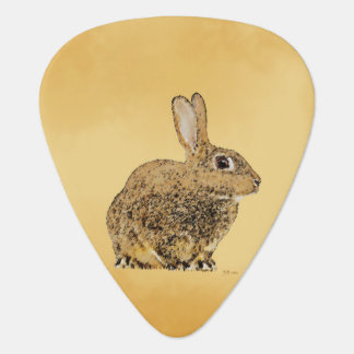 Golden Rabbit Guitar Pick