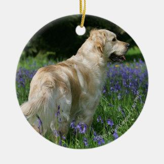 Golden Retreiver in Flowers Christmas Ornament