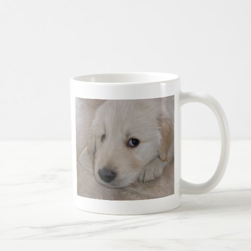 Golden retreiver puppy mugs