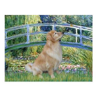 Golden Retriever 11 - Lily Pond Bridge Postcard